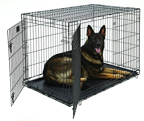 XL Dog Crate | MidWest Life Stages Double Door Folding Metal Dog Crate | Divider Panel, Floor Protecting Feet,...