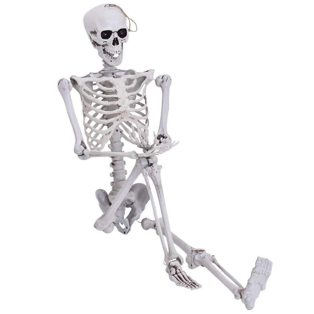 Halloween Decorations for Party Haunted House Accessories Bar Graveyard Decorations Party Supplies US Fast Shipment White Life Size Halloween Skeleton 160 cm Haokanba Full Body Joints Skeletons