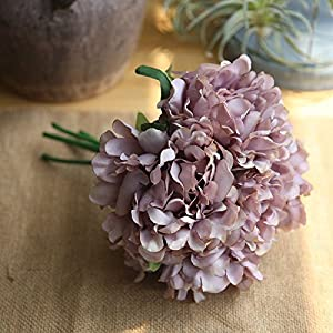 RXYY 5PCS Silk Peonies Artificial Flower for Wedding Decor Peonies Flower Bouquet Home Party Decoration Fake Flower, Plum 81