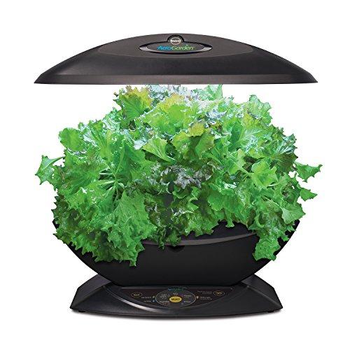 Miracle Gro Aerogarden 7 Pod Indoor Garden With Gourmet Herb Seed Kit Black Buy Online In Uae