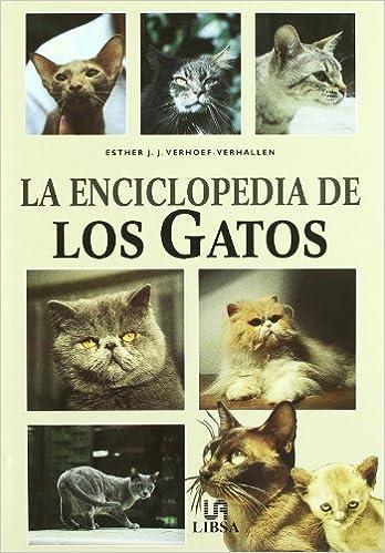 La Enciclopedia de Los Gatos (Spanish Edition): Esther ...