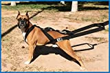 Dog Pulling Harness, Weight Pulling, Dog Training, Canicross, Behavior Control by KnK Dog Supplies