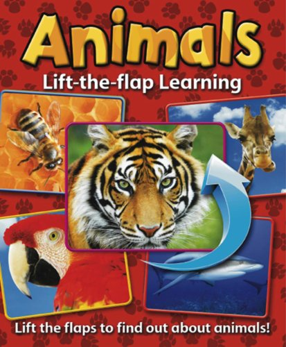 Lift-the-Flap Learning: Animals: Lift the Flaps to Find Out About Animals! from Armadillo