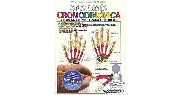 ANATOMIA CROMODINAMICA ATLAS ANATOMICO PARA COLOREAR: KAPIT WYNN ...