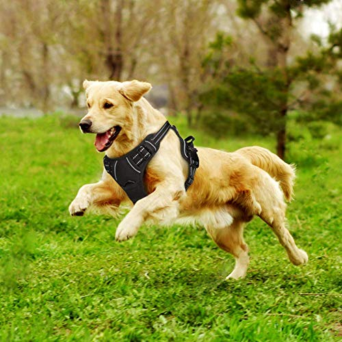 Dog Harness Medium, Auparto No Pull Big Dog Harness M Medium Dog Vest Adjustable Easy Control Handle and Back Leash Attachment, Chest Girth 22-27 inch, Reflective Oxford for Walking Training Car Rides
