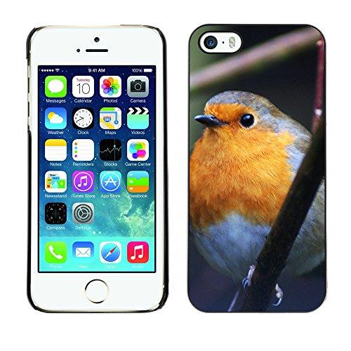 Premio Sottile Slim Cassa Custodia Case Cover Shell // F00015159 oiseau // Apple iPhone 5 5S 5G