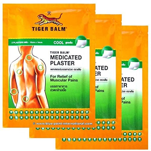 [6pcs Tiger Balm Plaster Cool Pain Relief Patch] (Childrens Salsa Costumes)