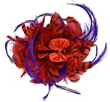 Red Hat Ladies Society Fancy Red & Purple Feather Striped Hair Claw