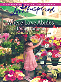 Where Love Abides (Heartland Homecoming Book 3)