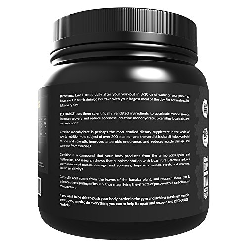 Legion Recharge Post Workout Supplement - All Natural Muscle Builder & Recovery Drink With Creatine Monohydrate. Naturally Sweetened & Flavored, Safe & Healthy. Unflavored, 60 Servings.