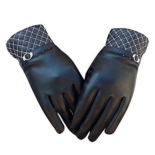 Cideros Women's Touchscreen Gloves Warm Lined Thick Warmer Winter Outdoor Sport Touch Gloves ... (Fancy Dress Boxing Gloves)