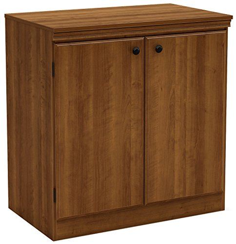 South Shore Small 2-Door Storage Cabinet with Adjustable Shelf, Morgan ()