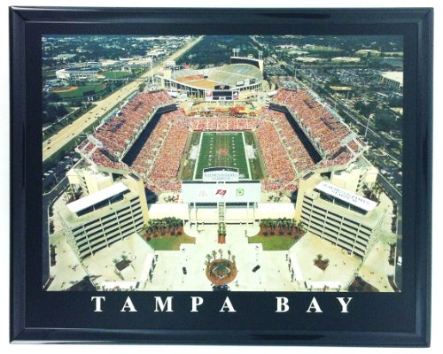 Tampa Bay Buccaneers Stadium Framed Aerial Photo Wall Art F7531A ()
