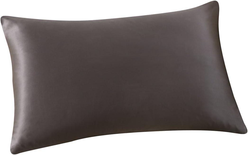 ALASKA BEAR Natural Silk Pillowcase, Hypoallergenic, 19 Momme, 600 Thread Count 100 Percent Mulberry Silk, Standard Size with Hidden Zipper (1, Charcoal Gray)