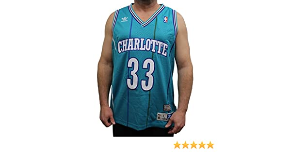 4cbb0397241e Amazon.com   Alonzo Mourning Charlotte Hornets Adidas NBA Throwback