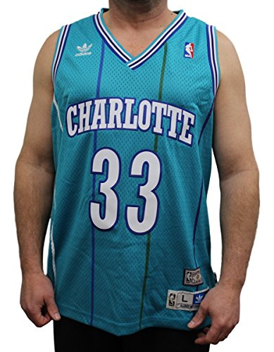 (Alonzo Mourning Charlotte Hornets Adidas NBA Throwback