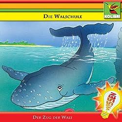 Die Walschule. Der Zug der Wale