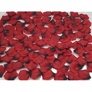 obmwang 2000 PCS Dark Red Silk Rose Petals Wedding Flower Decoration