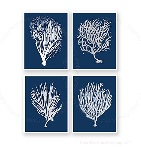 Navy Blue Beach Decor Wall Art Set of 4 Unframed Art Prints Beach Decor Sea Corals Sea Fan Decor Sea_Corals_Inverted_Navy4C (Navy Coral Picture)