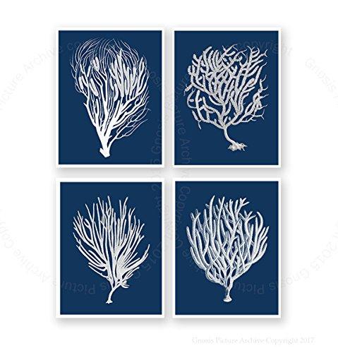 Navy Blue Beach Decor Wall Art Set of 4 Unframed Art Prints Beach Decor Sea Corals Sea Fan Decor Sea_Corals_Inverted_Navy4C (Navy Coral Picture)