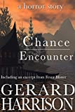 Horror Fiction: Chance Encounter