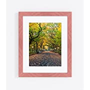 Country Colors Picture Frame Collection, 12 Colors, Several Sizes (11x14 Frame / 8x10 Photo, Mint Julep)