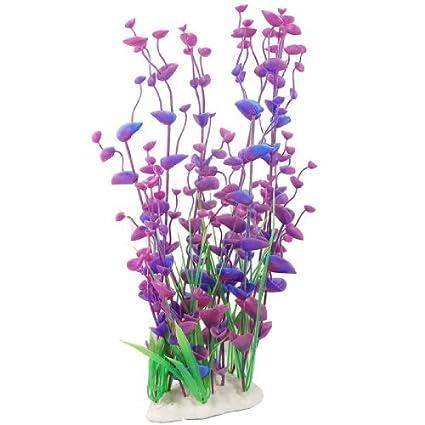 Amazon.com : eDealMax Decoración de la planta plástico acuario de paisajismo, Azul Fucsia : Pet Supplies