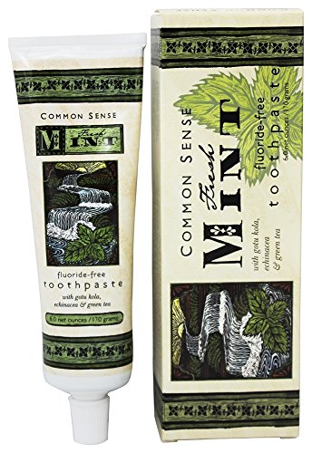 Echinacea Herbal Toothpaste (Fresh Mint Toothpaste 6 net oz.)