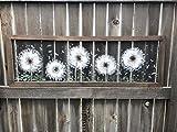 Dandelion , fresh dandelion ,wall art