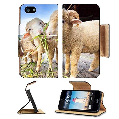 luxlady-premium-apple-iphone-5-iphone-5s-flip-pu-leather-wallet-case-iphone5-image-id-34446838-merin