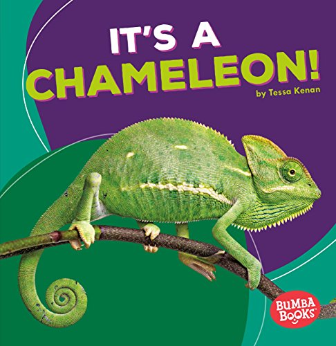 It's a Chameleon! (Bumba Books ® _ Rain Forest Animals)