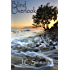 Blind Overlook (Book 3 of the Jay Leicester Mysteries Series)