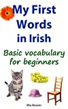 My First Words in Irish%3A Basic vocabul