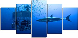 PENGTU Paintings Modern Canvas Painting Wall Art Pictures 5 Pieces, Big deep Carcharodon Friendly lamniformes Dangerous Stunning Sun cage Diving Shark Hunt,Wall Decor HD Printed Posters Frame