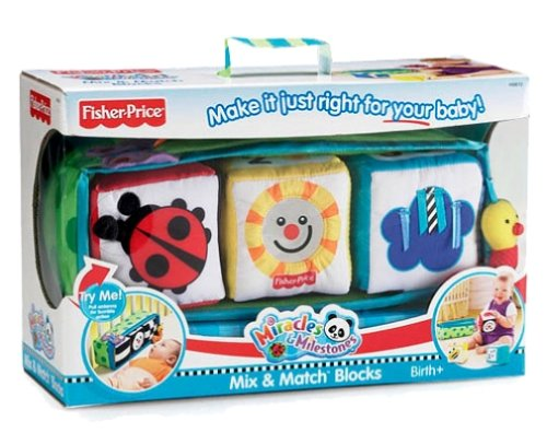 Fisher-Price Miracles and Milestones - Mix and Match Blocks