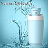 SMYTSHOP Mini Ultrasonic Cool Mist Humidifier for Travel Office...