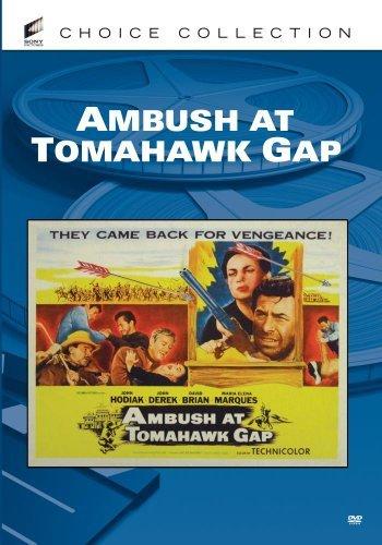 (Ambush At Tomahawk Gap by John Hodiak)