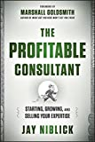 img - for The Profitable Consultant: Starting, Growing, and Selling Your Expertise by Jay Niblick (2013-04-01) book / textbook / text book