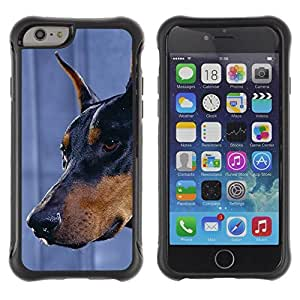 Suave TPU GEL Carcasa Funda Silicona Blando Estuche Caso de protección (para) Apple Iphone 6 PLUS 5.5 / CECELL Phone case / / Doberman Pinscher Canine Dog Miniature /