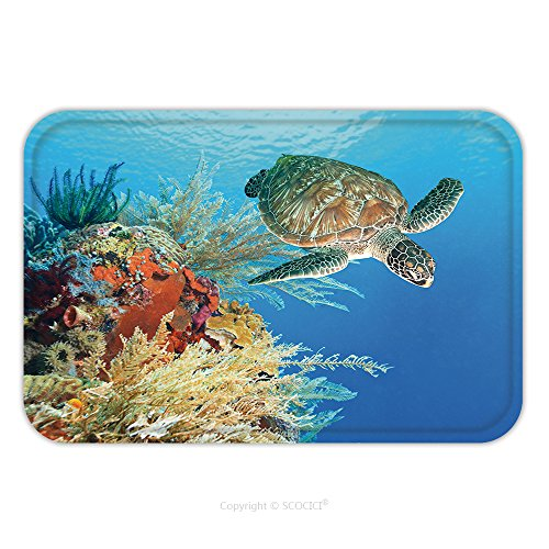 Flannel Microfiber Non-slip Rubber Backing Soft Absorbent Doormat Mat Rug Carpet Turtle Swimming Underwater Among The Coral Reef_16466632 for Indoor/Outdoor/Bathroom/Kitchen/Workstations