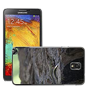 Hot Style Cell Phone PC Hard Case Cover // M00131213 Snake Reptile Animal Climbing // Samsung Galaxy Note 3 III N9000 N9002 N9005