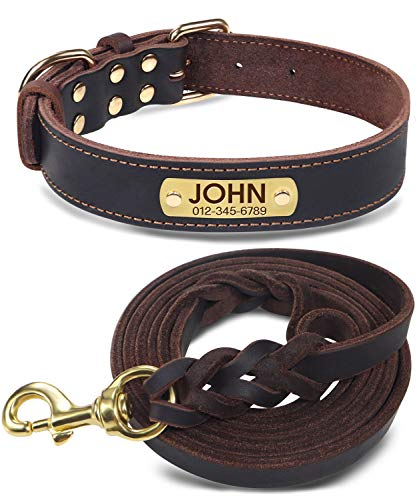 Joytale Personalized Leather Dog Collar with Name Plate and 6FT Heavy Duty Braided Leather Dog Leash Set for Medium Large Dogs, M