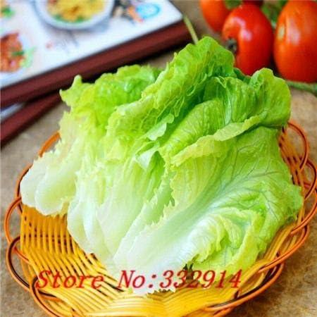 Decoración de jardín Bonsai 100 semillas de lechuga verduras ...