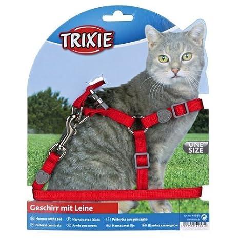 Trixie Set Gatos, Nylon, Colores Surt.: Amazon.es: Productos para mascotas