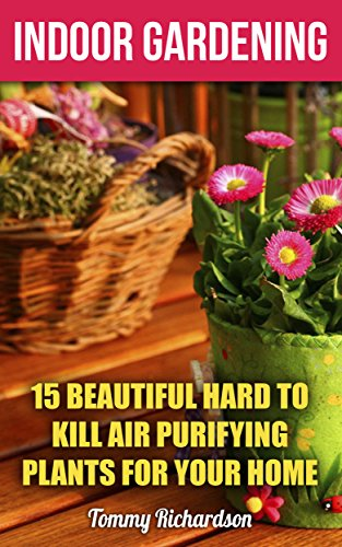 Indoor Gardening: 15 Beautiful Hard To Kill Air Purifying Plants For Your Home