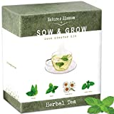 herb starter organic - Grow 4 Herbs for Making Herbal Tea - Indoor Garden Seed Starter Kit for Planting Organic Mint Seeds, Catnip Seeds, Lemon Balm and Chamomile. Complete Growing Set for Beginners and Expert Gardeners