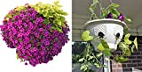 Ultimate Hanging Baskets - Strawberry, Tomato, Flower, and Herb Outdoor Planters - Use Garden Pots For Growing Plants Outside On A Deck, Fence, or Balcony (4, Stone)
