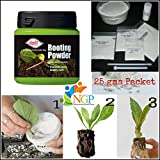 Natural garden plants All Purpose Rooting Hormone Dry Powder for Cuttings Plants, 25g Pack