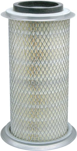Baldwin Filters - PA3984 - Air Filter, 5 x 13-29/32 in.