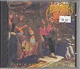 Funk-o-metal carpet ride (1989/90) by Electric Boys
